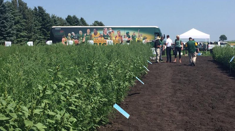 Third Annual NDSU Pioneer Tailgate Tour Making Eight Stops in July